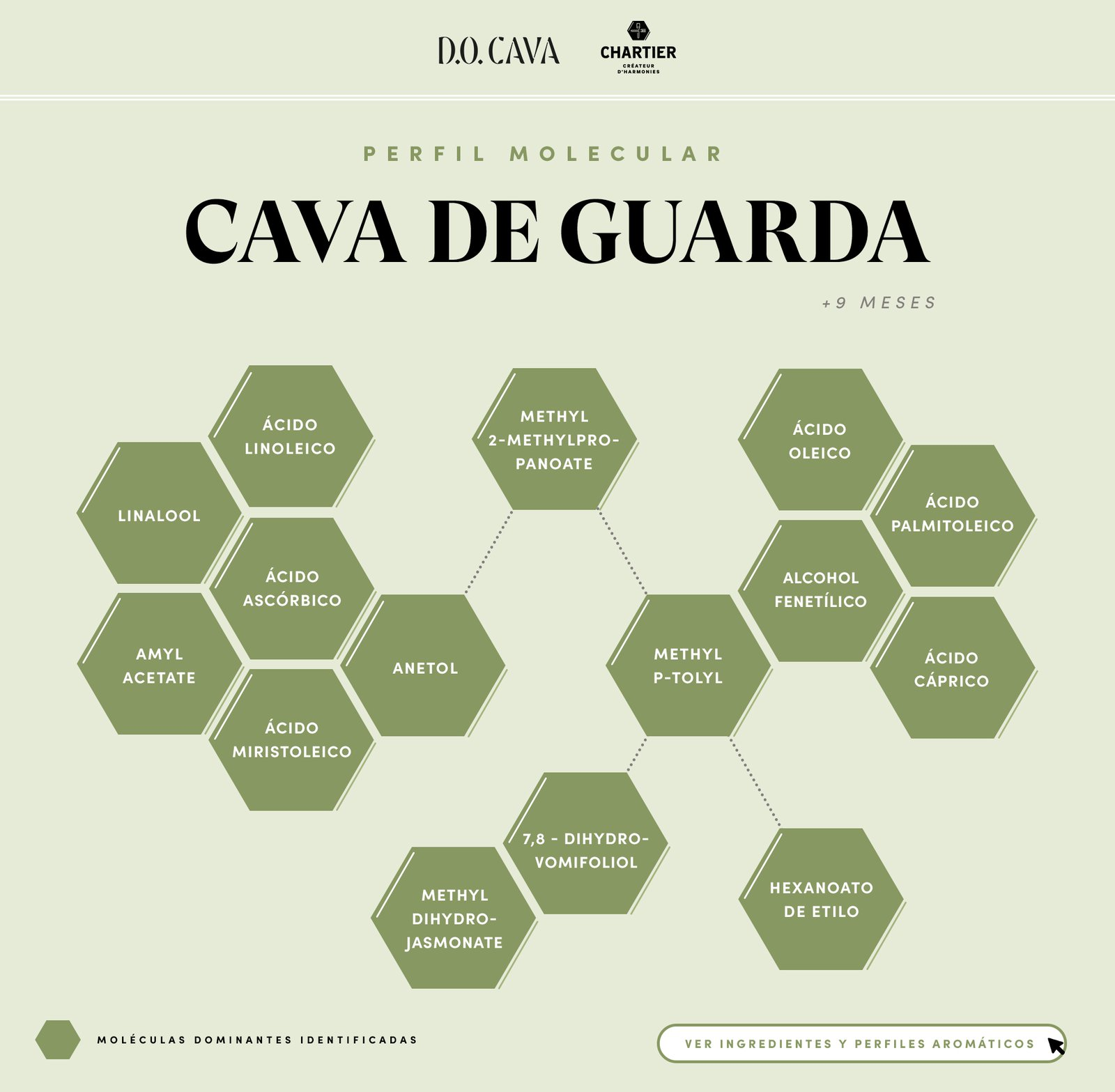 CAST-Summary-Cava-de-Guarda.jpg